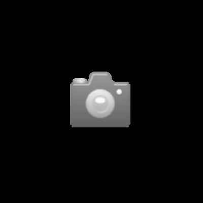 Weser Gold Orangensaft EW 100 cl